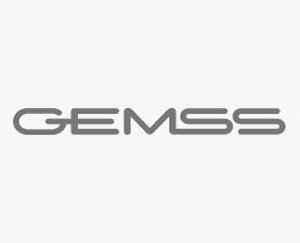 Gemss C-Arms